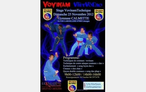 STAGE VOVINAM TECHNIQUE